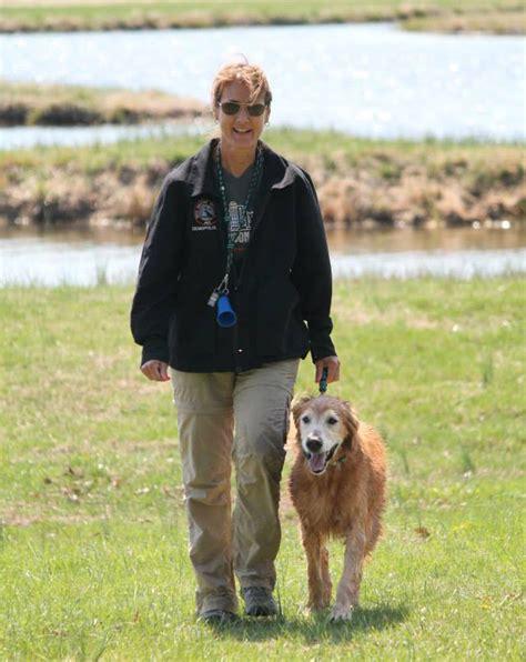 golden retriever limping on front leg penn vet giving stories