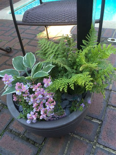 286 best images about plant containers on pinterest container plants fall containers and
