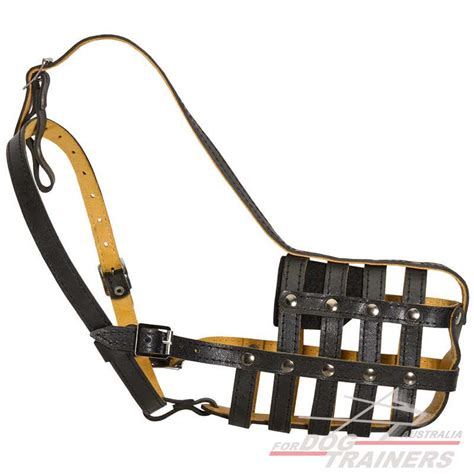 leather muzzle buy nappa padded leather basket muzzle australian store