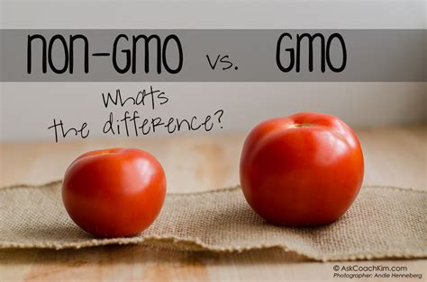 genetic avoid genetically engineered foods by jeffrey m smith fairfield ia should you eat gmo foods henry halse