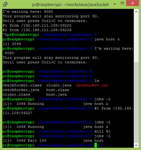 run process in background linux hello raspberry pi linux tips run and kill process in