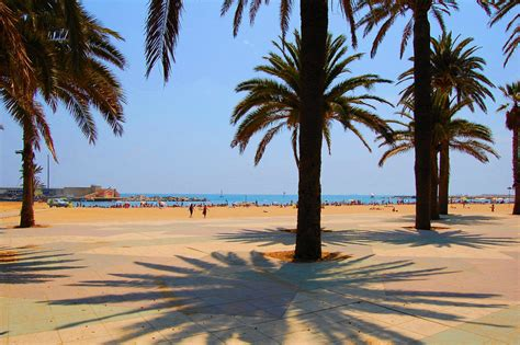 best apartments in barcelona best beaches in barcelona rent top apartments barcelona