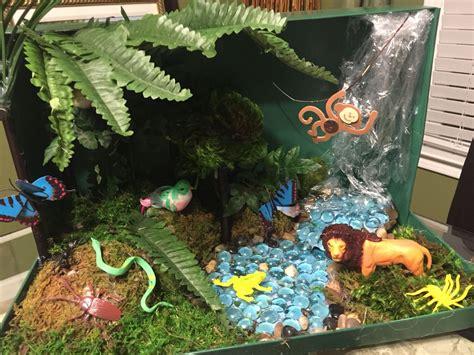 amazon rain forest diorama background and animals girl 4th grade rainforest ecosystem shoebox diorama tropical