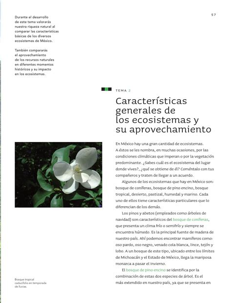 issuu libros sep 2016 2017 5 grado geografia issuu libros sep 2016 2017 issuu libros sep 2016 2017
