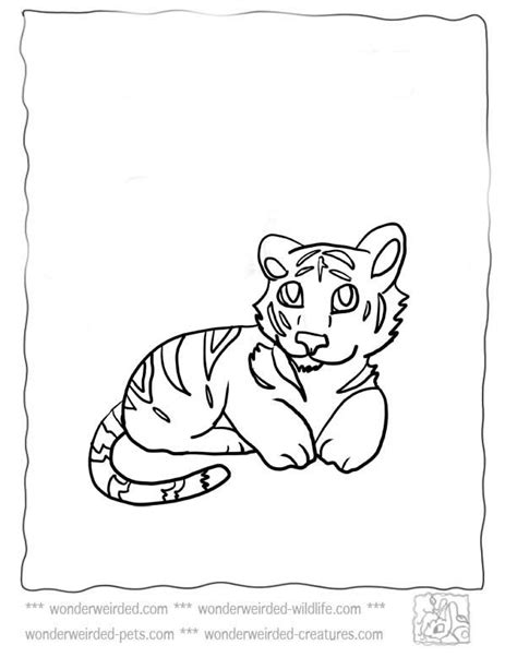 coloring pages of cute baby tigers baby tiger coloring pages coloring home