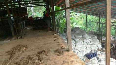 Jaring Perangkap Burung Jaring Pagar Kandang Lebar 250 Meter 1 jaring perangkap burung jaring pagar kandang lebar 2 5 meter sumber plastik