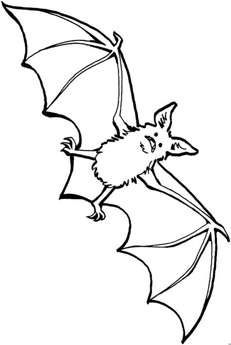 Kostenlose Vorlage Fledermaus aengstliche fledermaus 2 ausmalbild malvorlage tiere