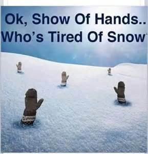 Memes About Snow - how snow memes are helping me keep my sanity not always