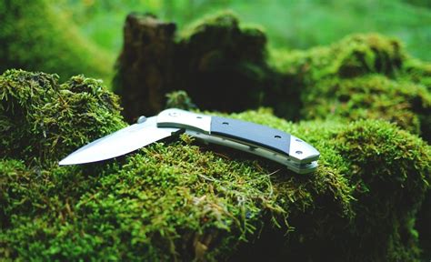 best knife for skinning deer best deer skinning knife 2017 reviews the outdoor land