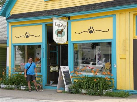 shoo for puppies the shop bathhouse boutique mahone bay all you need to before you go