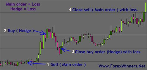forex hedging tutorial forex hedging can save you from big losses forex winners