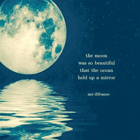 moon quotes moon quotes gallery wallpapersin4k net