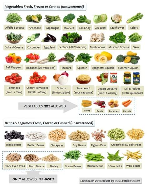 phase 1 vegetables r 233 gime miami south and l 233 gumes on