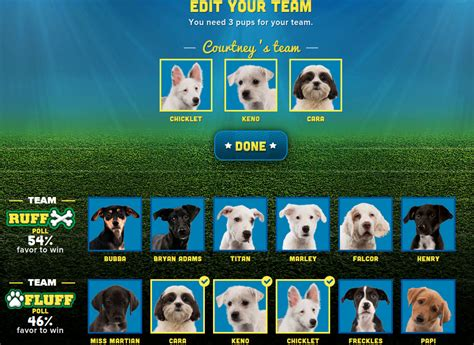 puppy bowl teams puppy bowl 2015 is this sunday fuzzy today