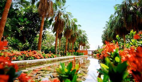 imagenes de jardines botanicos en mexico jardin botanico culiacan 03 renta de autos en m 233 xico
