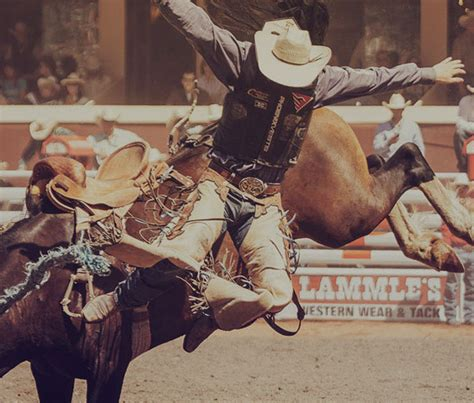 Mibil Rodeo 2017 shows events calgary stede