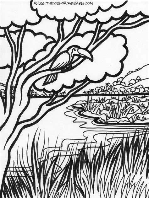 Jungle Tree Coloring Page | jungle coloring pages free description of jungle trees