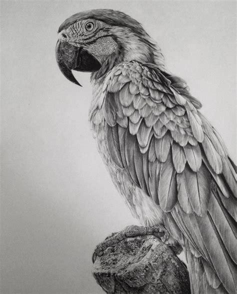 tattoo prices lisbon magnifiques dessins photo r 233 alistes r 233 alis 233 s par monica lee