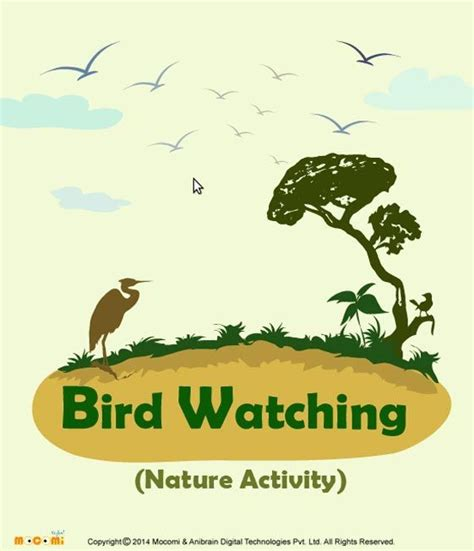 161 best images about nature activities on pinterest 33 best nature activities for kids images on pinterest