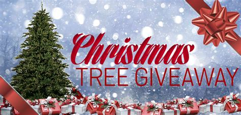 Christmas Tree Giveaway - christmas tree giveaway 1000bulbs com blog