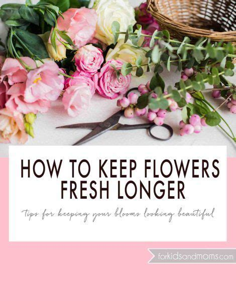 17 best images about taking care of flowers on pinterest