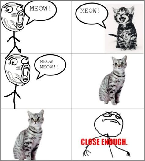 Talking Cat Meme - cybergata kitteh memes and toons