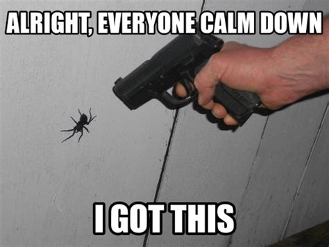 Calm Down And Meme - 46 best calm down i got this images on pinterest keep calm stay calm and funny stuff