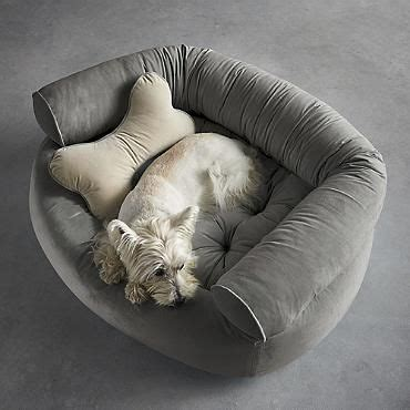 comfy couch dog bed comfy couch pet bed yay adopt a dog pinterest