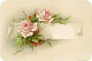 exceptionally beautiful vintage roses with pin image