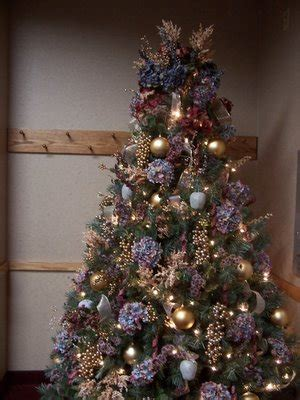 perennial passion hydrangea tree