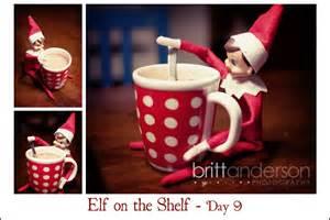 on the shelf week two 187 britt photography