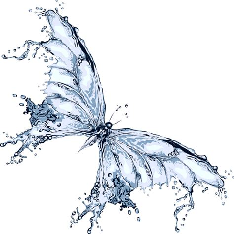 water butterfly vector design vector animal free download