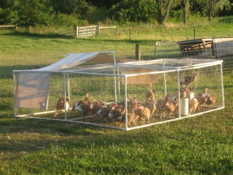 chicken diy 20 to make projects for happy and healthy chickens books 15 creative pvc pipe projects for your yard and garden