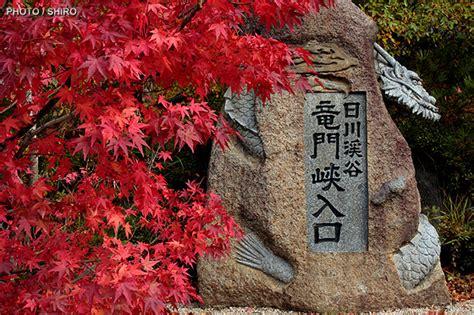 ama vive humanizate todos somoa uno haiku japon 201 s ama vive humanizate todos somos uno