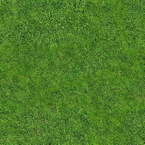 photoshop view pattern free high quality tileable seamless grass texture free