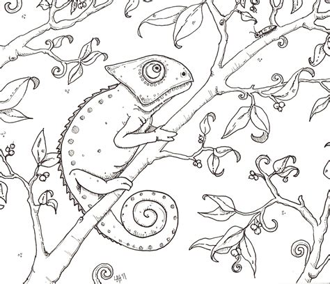 Hedgie S Desk Chameleon Coloring Page Chameleon Coloring Pages Printable