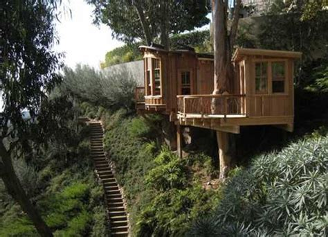 modern tree house designs bring back backyard ideas