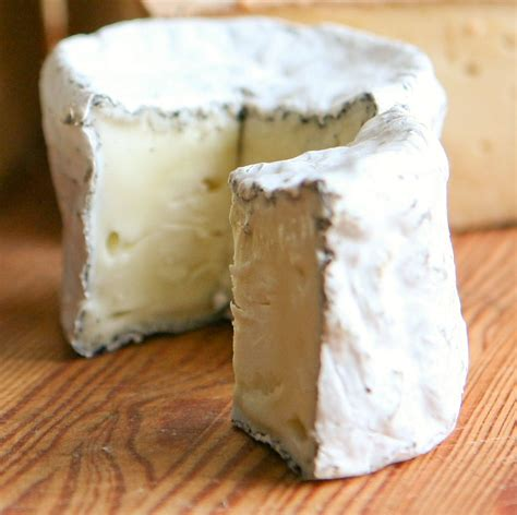 goat cheese recipe with ash how to make cheese cheesemaking com