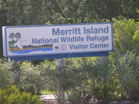 travel with the slivas merritt island national wildlife