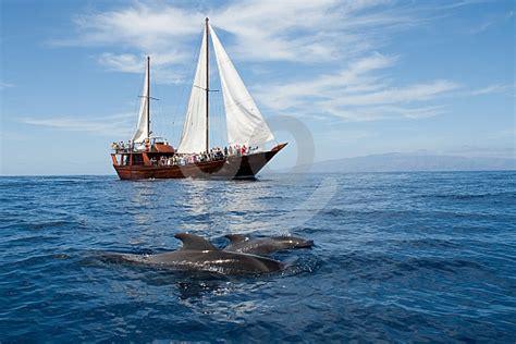 barco pirata los gigantes tour de medio d 237 a en barco barco pirata tenerife