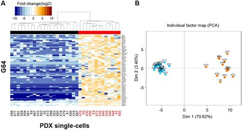 Home Design Tool by Single Cell Rna Sequencing Identifies Tumor Subpopulations