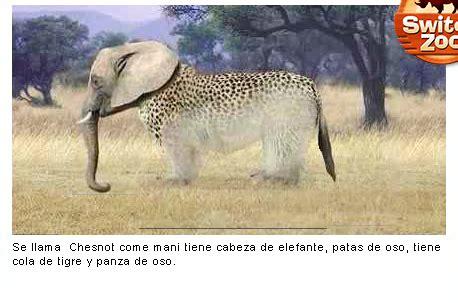 switch zoo make new animals animales locos escuela 4 d e 12
