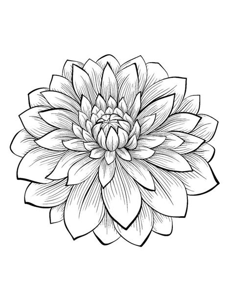 Flower Coloring Pages Printable by Printable Coloring Pages For Adults Flowers