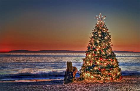panoramio photo of christmas tree sunset at crystal cove