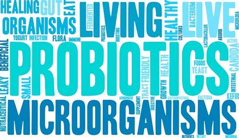 alimenti probiotici e prebiotici differenza tra probiotici e prebiotici medicinalive