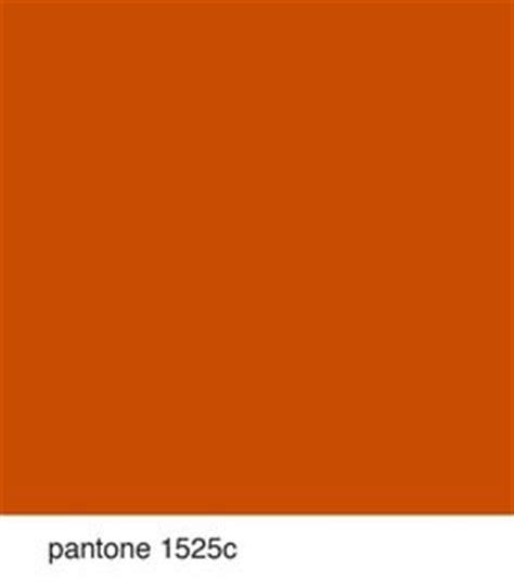 orange color safety and orange on