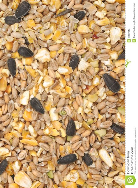 bird seed mix royalty free stock photography image 36387117