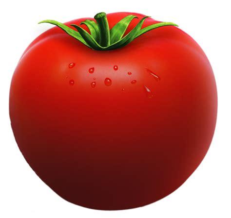 Food Barn Tomato Slice Clipart Black And White Kid Clipartbarn