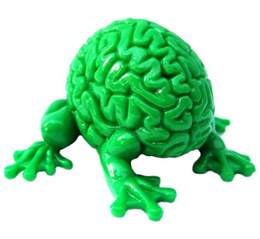 Brain Green 10 Reasons Not To Trust Your Brain