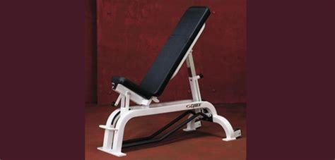 cybex adjustable ab bench cybex portfolio